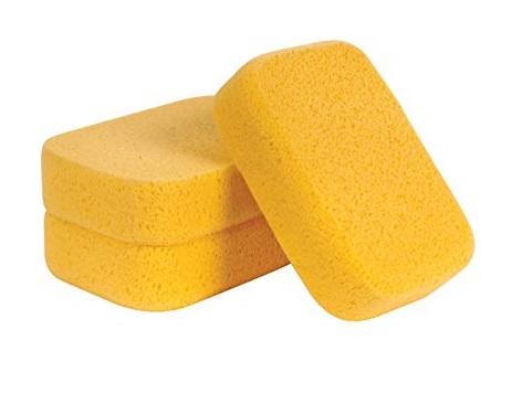 sponge asremavad