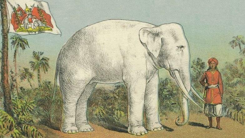 white elephant_asremavad